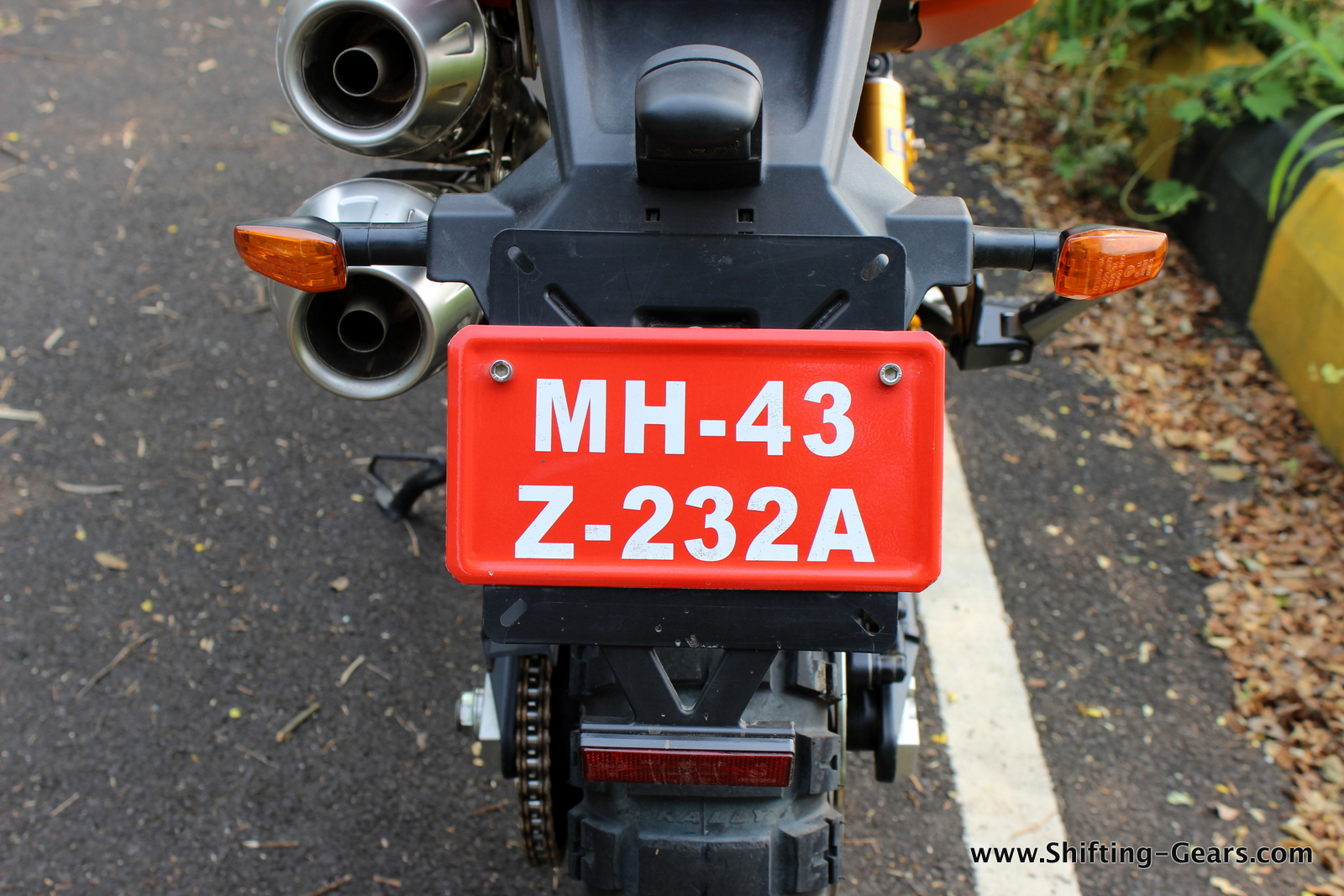 Rear mudguard and the number plate mount