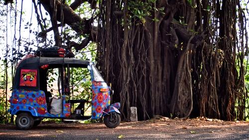 The Rickshaw Run